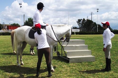 un cavallo per amico,messina,augustanews